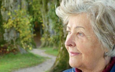 Alzheimer e a Alimentação